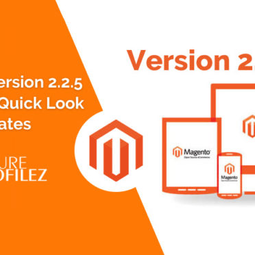 Magento Version 2.2.5 Release: A Quick Look at The Updates